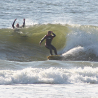 learsz avatar